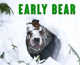 Early Bear